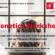 French Workshop – Phonetics